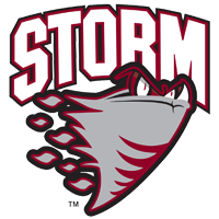 Storm tends to blueline early in OHL draft