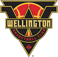 Wellington slips by Hamilton United