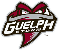 Storm scores early, but falls to Sudbury Wolves